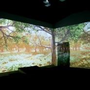 Интерактивное мультимедийное пространство «Лес» фотографии