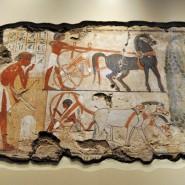 Выставка «За Нилом. Искусство Древнего Египта» фотографии