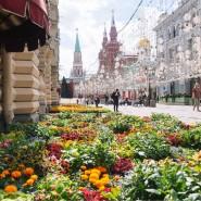 Фестиваль цветов в ГУМе 2021 фотографии