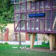 Сад «Эрмитаж» фотографии