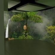 Выставка «Как построить зоопарк?» фотографии