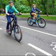 Прокат велосипедов в парках Москвы 2021 фотографии