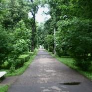 Парк «Березовая роща» фотографии