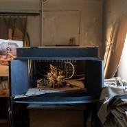 Выставка «Модулор Игоря Попова» фотографии