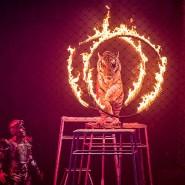 Шоу братьев Запашных «МАГиЯ» 2018/19 фотографии