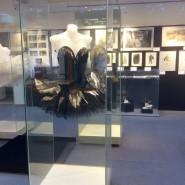 Выставка «Лебединое озеро». Судьба балета на главных сценах Москвы и Петербурга» фотографии