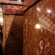 Выставка «Осторожно, двери закрываются! Следующая станция «Юрский период» фотографии