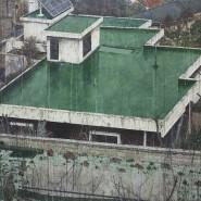 Выставка «Москва — Сеул: общие замыслы» фотографии