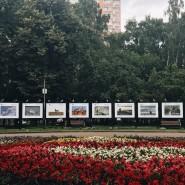 Выставка «Животные России» фотографии