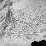 Выставка «Геометрия природы» фотографии