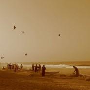 Выставка «Там, где никому неснятся сны: отсвященного географии кне-месту» фотографии
