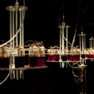 Выставка «Вечная батарейка» фотографии