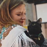 Фестиваль «Тыквы и коты» 2019 фотографии
