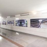 Выставка «Смотри шире» фотографии