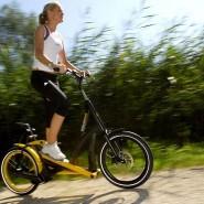 Тренировка на велостепперах на Воробьевых горах фотографии