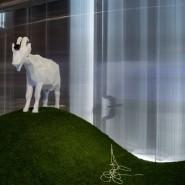 Выставка «Выбирая дистанцию: спекуляции, фейки, прогнозы в эпоху коронацена» фотографии