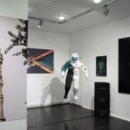 Выставка «Системы-Сверхсистемы» фотографии