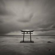 Выставка «Фукусима: надежда и отчаяние» фотографии