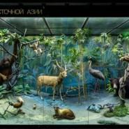 День рождения Дарвиновского музея 2020 фотографии