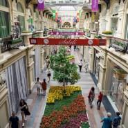 Фестиваль живых цветов в ГУМе 2016 фотографии