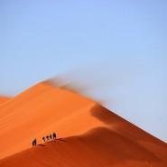 Выставка «Вдоль Великого Шелкового пути. С Запада на Восток» фотографии