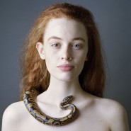 Выставка «Beauty» фотографии