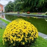 Фестиваль цветов, урожая и искусства «Краски осени» 2019 фотографии