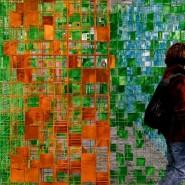 Выставка «Ориентирование на местности» фотографии