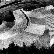 Выставка «Поэтика ландшафтов» фотографии