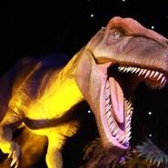 «Город динозавров» на ВДНХ фотографии
