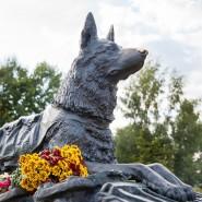День фронтовой собаки в Музее Победы 2019 фотографии