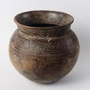 Выставка «Век археологии» фотографии