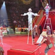 Цирковая программа «Монте-Карло — Москва» 2018 фотографии