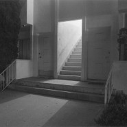 Выставка «Прогулка» фотографии