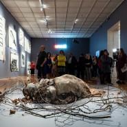 Выставка «Хаим Сокол. В некотором смысле я становлюсь ими, а они мной» фотографии