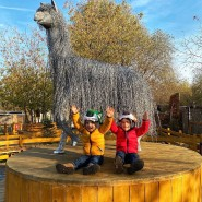 Годовщина проекта «Альпака Парк» в парке «Сказка» 2020 фотографии