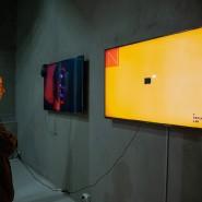 Выставка «Мастерская Бориса Трофимова» фотографии