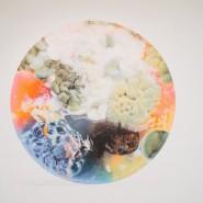 Выставка «Воздух» фотографии