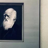 Выставка «Дарвин и мы» фотографии