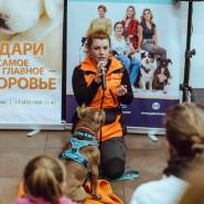 Благотворительный онлайн- фестиваль «Собаки, которые любят» 2020 фотографии