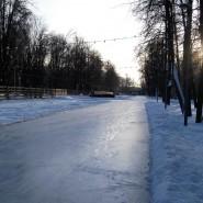 Открытие ледового катка в Перовском парке 2016 фотографии