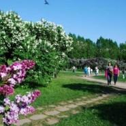 Парк «Сиреневый сад» фотографии