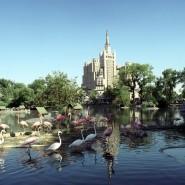 Московский зоопарк фотографии