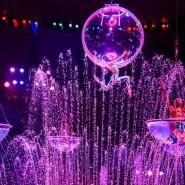 Выставка «Цирк зажигает огни!» фотографии