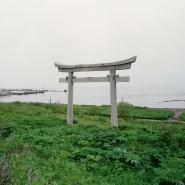 Выставка «Своя Земля / Чужая Территория» фотографии