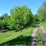 Парк 60-летия Октября фотографии