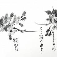 Выставка «Суми-э. Живопись из тумана» фотографии