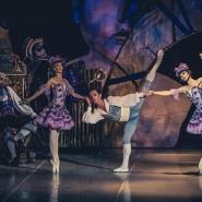Фестиваль «Балет в саду Эрмитаж» 2015 фотографии