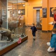 День всех влюбленных в Дарвиновском музее 2019 фотографии