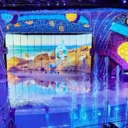 Шоу воды в Москвариуме фотографии